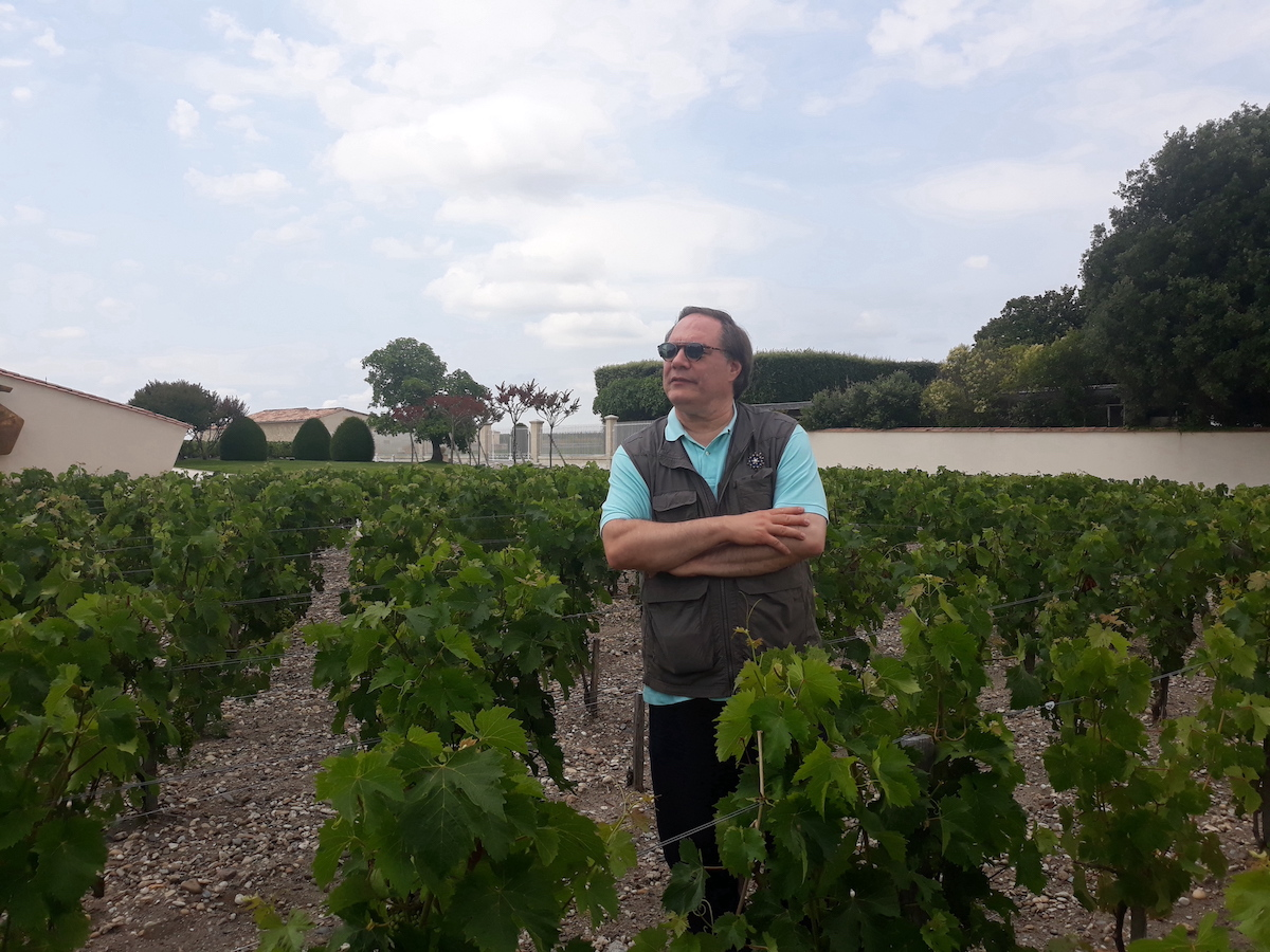 Standing-among-the-vines-at-Mouton-Rothschild-2-1-1-1-2